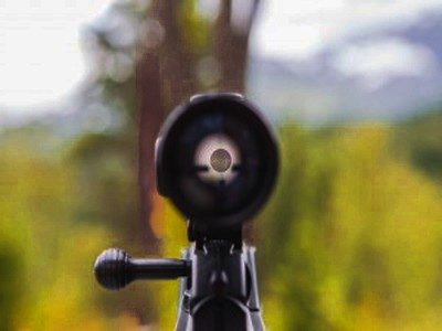 Shotgun Scope for Turkey Hunting